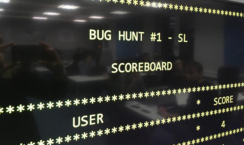 Bug hunting and the search for perfection